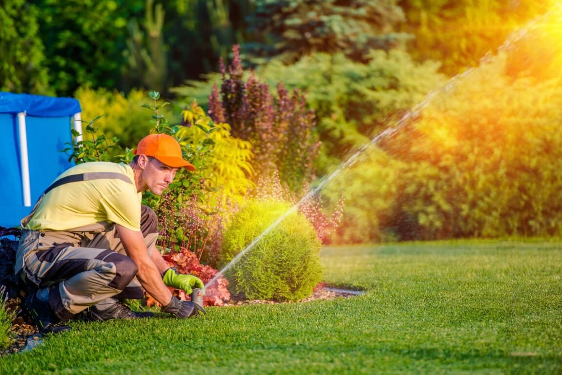 lawn care clearwater fl