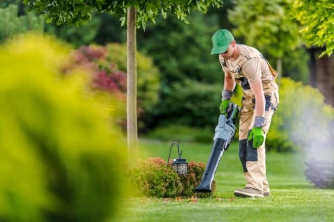 lawn service clearwater fl