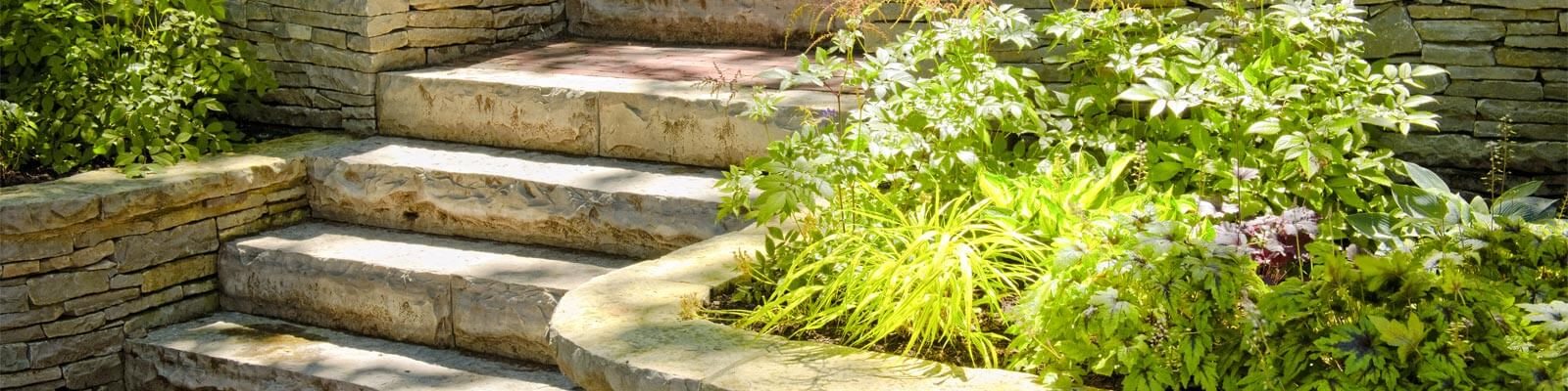 clearwater landscape services